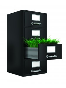 Drawer of Green Grass
